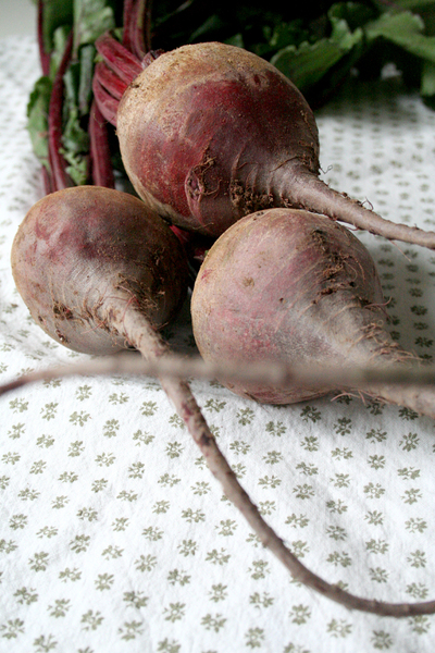 Beets2_1